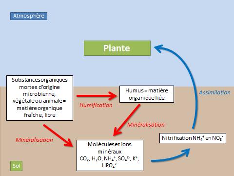 matieres organiques